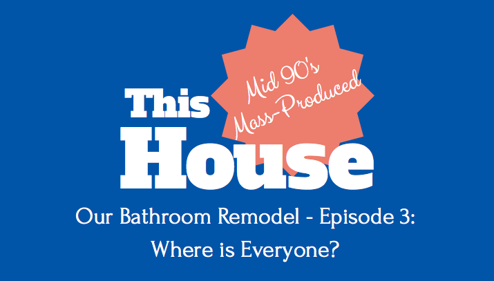 Our Bathroom Remodel - Episode 3: Where is Everyone?